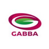 The Gabba Stadium